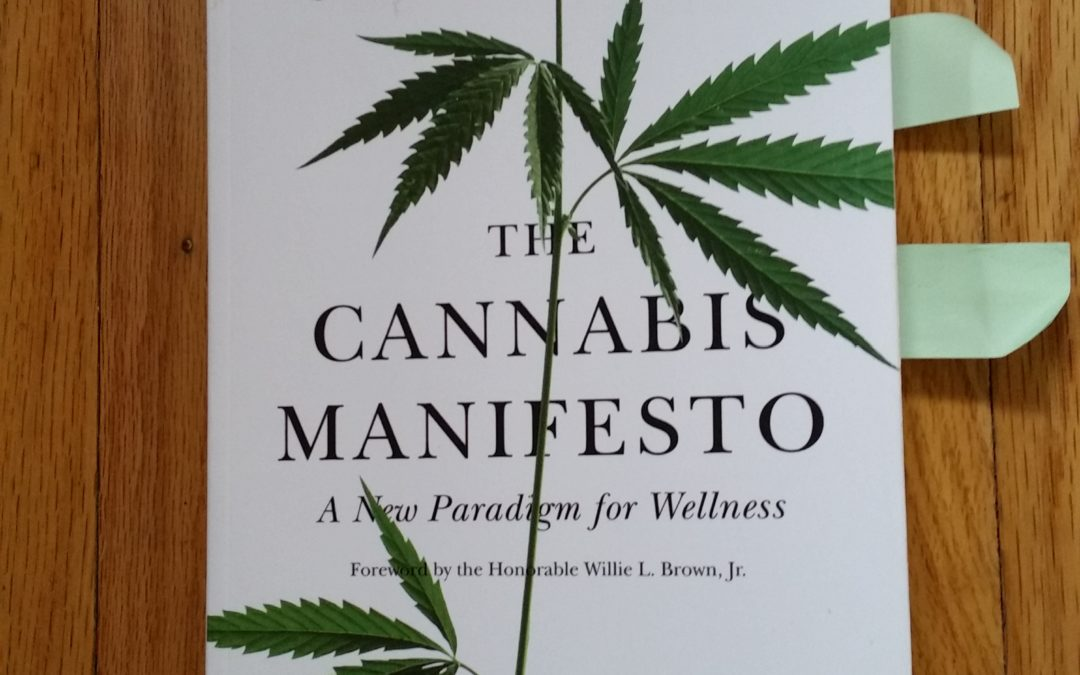 Insight from The Cannabis Manifesto – Why Recreational Use is a Harmful Term