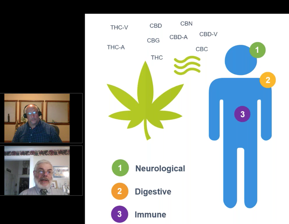 Dr Morgan discusses the Endocannabinoid System and Cannabis Impact on it